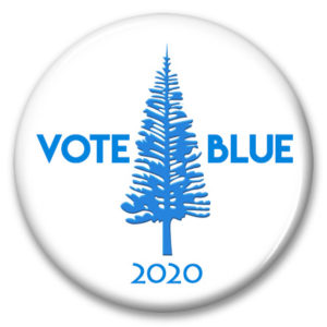 north carolina vote blue 2020 pinback button